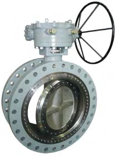 Double Offset Butterfly Valve - BUV125